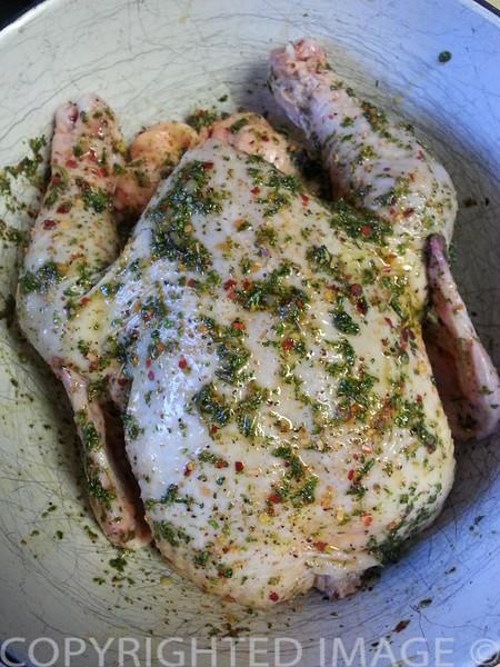 Chicken in Garlic and Parsley Marinade