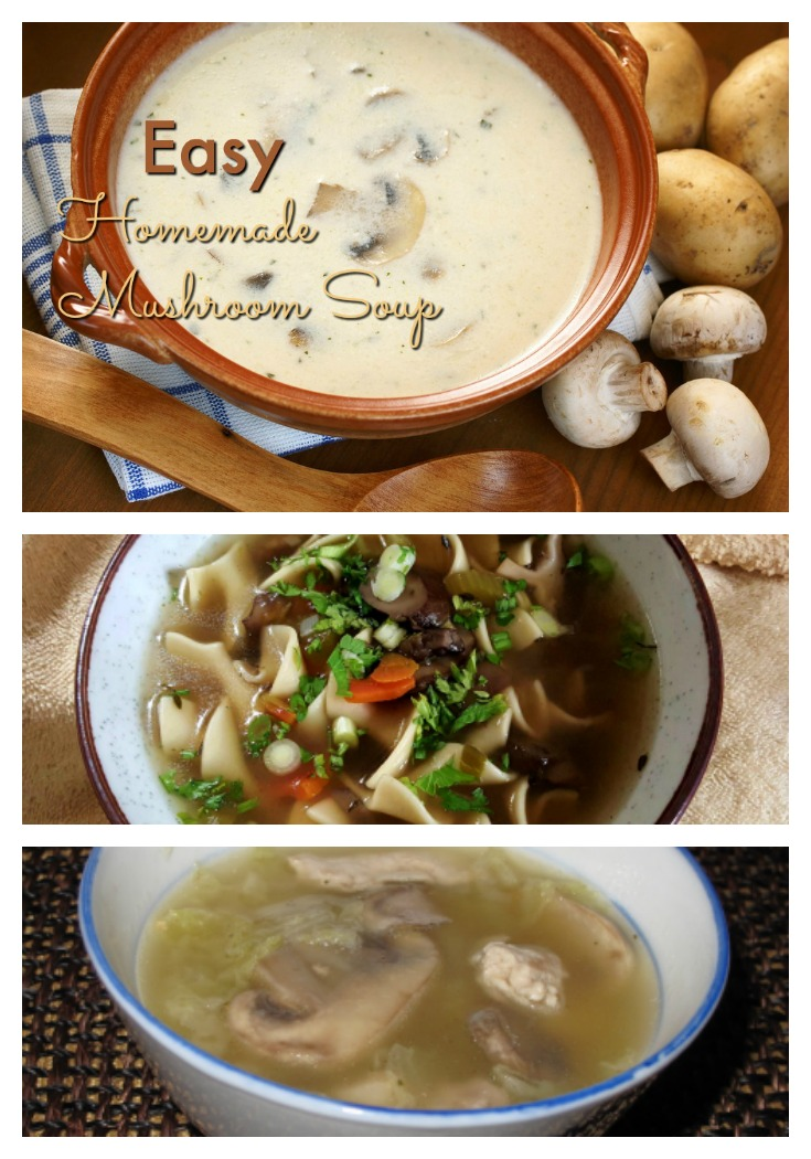 easy-homemade-mushroom-soup-recipes