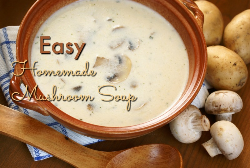 Bowl with creamy mushroom soup–© MKucova