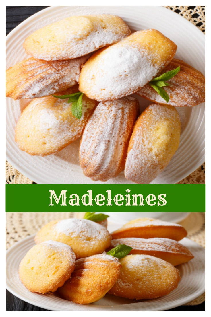 madeleine-cookies - book shaped dinner plates © Can Stock Photo / FomaA