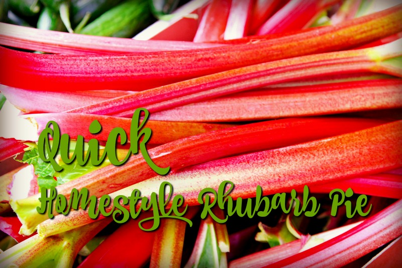 Quick Homestyle Rhubarb Pie