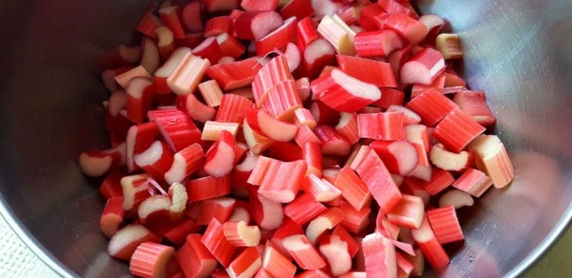 old-fashioned-rhubarb-pie5