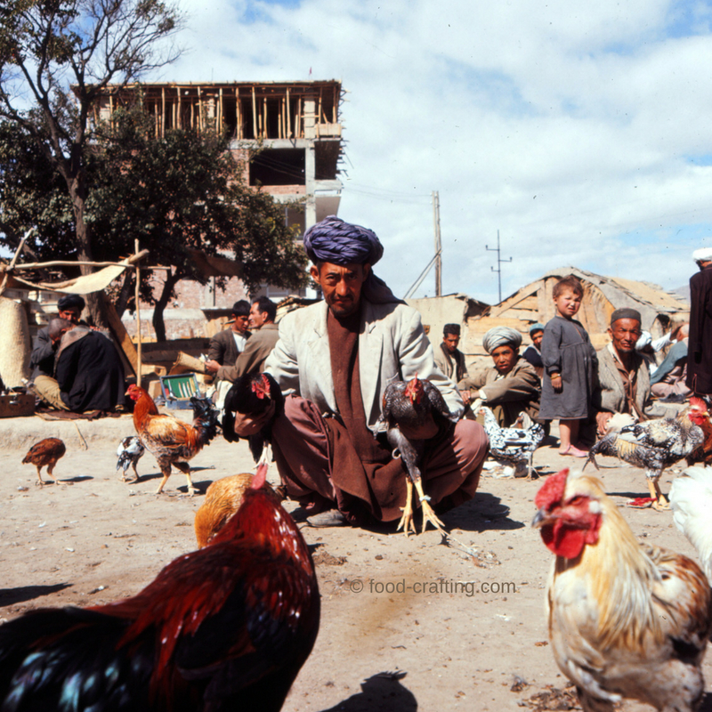 Afghan man proudly selling chickens and roosters in a dusty open air market.
